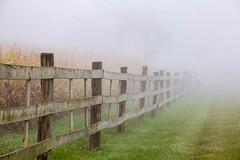 Pure Michigan (Kathy~) Tags: michigan fog annarbor fall puremichigan herowinner favescontestwinner ultraherowinner 15challengeswinner instagram