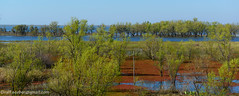 Between rivers (See-be-r Photography) Tags: trees water argentina river landscape nikon entre rios d800 2470