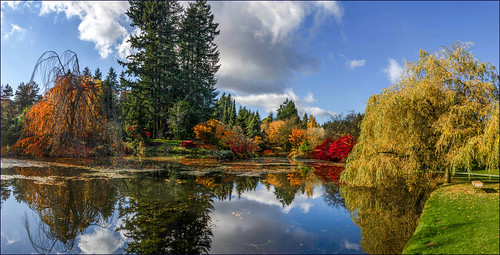 VanDusen Autumn Glory