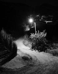 El Camino (II) (ndrg) Tags: light night sot sotdechera sote racsoin racsoinn chera noche nocturna blancoynegro blackandwhite path camino ndrg ndrg2 senda oscar jimenez oscarjimenez óscarjiménez