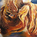 """Scottish Highlander,"" oil on panel. Artist: Nadine Longmore"
