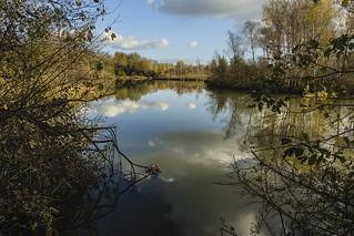 A l'étang St Ladre