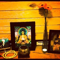 Steve Stanley on the Urban Retreat. What a great, informative and inspiring week thank you to The Buddhist Centre Online  Here's my shrine... #urbanretreat