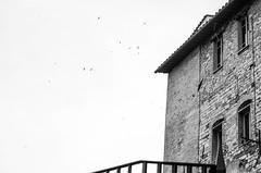 architecture, space, rhythm, birds, Perugia, Italy, Nikon D40, 4.29.13 (steve aimone) Tags: blackandwhite italy texture monochrome architecture blackwhite geometry bricks monochromatic textures perugia umbria grays visualrhythm nikond40 architectualforms