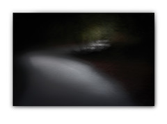 THE PATH (JuliandeCourcy) Tags: sigma icm dp3 intentionalcameramovement dp3merrill