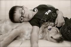 IMG_0094 - copia_2 (Pedro Montesinos Nieto) Tags: dog niños perro imagine fragile mascotas tenderness descanso dormido ageofinnocence miradas ternura inseparables fielamigo frágiles