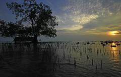 IMG_1127_mentari terbenam di hari krismas [explore December 31, 2013]