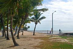 Key West (Florida) Trip, November 2013 0184Ri 4x6 (edgarandron - Busy!) Tags: beach keys florida beaches keywest floridakeys higgsbeach