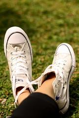 My Chuck (nanaissance) Tags: shoes converse taylor chuck