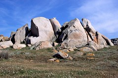 Capo Testa, granieten rotsen met klimgeit, Sardini Itali 2003 (wally nelemans) Tags: 2003 sardegna italy rocks italia sardinia granite mountaingoat itali capotesta rotsen graniet sardini klimgeit
