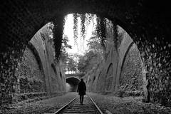 Paris, petite ceinture (flallier) Tags: paris pc petite ceinture chemindefer railroad railway rails rail tranchée parc montsouris 14e voieferrée bnw