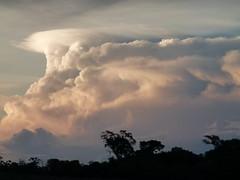 (IgorCamacho) Tags: brazil sky cloud storm nature paran weather brasil natureza cu southern cielo nubes tormenta nuvem tempo sul pileus clima tempestade