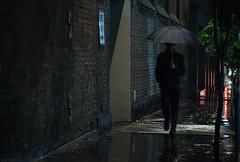Walking North (Ranga 1) Tags: nightphotography urban rain night umbrella canon lowlight streetlight nocturnal candid australian streetphotography australia melbourne streetscene victoria urbanlandscape nightexposure davidyoung littlecollinsstreet lowlightphotography ef24105mmf4lusm canoneos5dmarkii