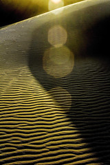 Dune, Light and Texture (Rod Heywood) Tags: oceanodunes sanddunes sand dunes furrows lines texture abstract contrast pismobeach landscape dune sunflare shadows form golden gold goldenlight light mesmerizing