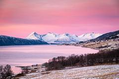 January light. (Reidar Trekkvold) Tags: xt10 cold fujifilm fujifilmxt10 is kvæfjord landscape natur nature nordnorge norway sjø snow snø sunset troms vinter winter borkenes ice