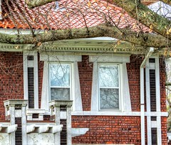 Window Perception (clarkcg photography) Tags: windows street muskogee oklahoma brick pyramid taper tile terracotta tree limb windowwednesday