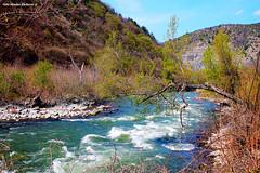 Ibar river (Mladja_IC431) Tags: river ibar dolina jorgovana kraljevo serbia canon digital dslr nature