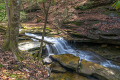 Little Mud Lick - Upper Falls_4231 (refmo) Tags: waterfall littlemudlick johnson county kentucky stream water