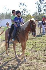 Carrossel em honra da Nsa. Sra. do Monte (aequintadovale) Tags: carrossel nsasradomonte pereira atividades equestre cavalos escola equitação quintadovale