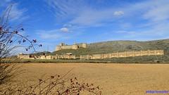 Berlanga de Duero (santiagolopezpastor) Tags: españa espagne spain castilla castillayleón soria provinciadesoria medieval middleages castillo castle chateaux muralla murallas walls wall