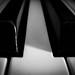 in between (3OPAHA) Tags: inbetween macromondays piano black white canon hmm explore
