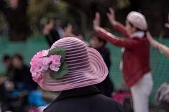 _DSC0437 (kymarto) Tags: bokeh bokehphotography bokehlicious dof depthoffield japan oldens vintagelens sony sonynex7 sonyphotography hanami park dance wollensak velostigmat