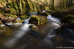 Chefna river. (gillesfrancotte) Tags: 2017 amblève ardennes aywaille chefna d800 nikon outdoor quarreux stoumont cascade creek eau fall landscape longexposure nature printemps spring stream torrent water waterfall waterscape wallonie belgique nikonpassion river