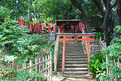 The Inari shrine (DameBoudicca) Tags: tokyo tokio 東京 japan nippon nihon 日本 japón japon giappone shiba 芝 東京都港区 maruyamazuishininari 円山隨身稲荷大明神 inari inariōkami oinari 稲荷大神 kami 神 shrine schrein sanctuaire helgedom 神社 shinto 神道