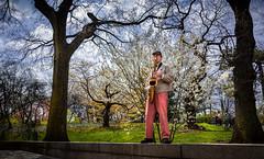 Sax in Central Park, New York (mcook1517) Tags: natgeo newyork park centralpark sax trees color grass flowers spring people urban urbanlandscape music landscape