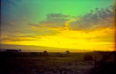 La maquina de ser feliz (FelipeBe) Tags: sunset atardecer punta negra maldonado uruguay uruguayo uruguaya playa nube nubes cloud clouds cielo sky 50mm canon ae1 kodak vision iii 500t analogico analogic america analogica film cine pelicula color