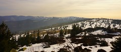 ...sur la crête (Philippe Haumesser Photographies (+ 4000 000 views) Tags: nature paysage paysages landscape landscapes montagne montagnes mountain mountains coucherdesoleil sunset neige snow hiver winter horizon arbre abres tree trees forêt forêts forest forests panorama tanet vosges alsace elsass france sonyilce6000 sonyalpha6000 sony 199 2017 hautrhin 68
