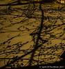Nite Shadows (jimgspokane) Tags: nightshots otw