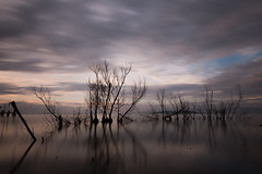 Flickr (Massimo_Discepoli) Tags: trees water sky clouds motion long exposure reflections trasimeno