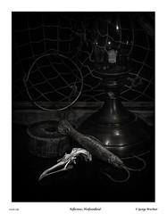 170328-2083ff (George Bruckner) Tags: reflectionsnewfoundland newfoundland intimate intimateobjects stilllife codjig fishinglure fishingjig skull boredskull death lobstertrap netting float fishingfloat codfishing newfoundlandcod oillamp blackandwhite blackandwhitephotography bw bwphotography historical historicalnewfoundland newfoundlandtravel canadianfineart canadianfineartphotography fineartphotography georgebruckner georgebrucknersphotography bruckner brucknersphotography