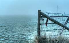 Fence that protects nothing from nobody. (Alex-de-Haas) Tags: smorgens 50mm alexdehaas d5 dutch hdr holland january nederland nederlands netherlands nikkor nikkor50mm nikon nikond5 noordholland thenetherlands westfriesland clouds cold daglicht damp daylight farmfields farmlands fog foggy frost handheld haze hazy highdynamicrange hoarfrost ice icy januari koud laaghangendebewolking landscape landscapephotography landschap landschapsfotografie licht light manage meadows mist mistig misty morning nevel nevelig ochtend overdag polder rijp stables watervapor waterdamp weiland winter wolken
