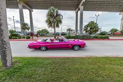 Pink Car Driveby (Facundity) Tags: texas pink car vintagecar palmtrees corpuschristi streetphotography pinkandgreen canoneos70d harborbridge gulfcoast southtexas driveby wideangle 10mm efs1022mm outdoors