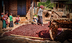 This whole village seems to do nothing but farm and dry out red chillies (Neville Wootton Photography) Tags: burma farmers farms holidays kalaw lightroom myanmar onestoptraveltours people topazlabs