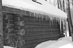 Awenda Provincial Park (D & E Grey Wolf Photography) Tags: logcabin myontario awendaprovincialpark winter son