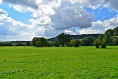 Green and blue... (Maria Godfrida) Tags: 7dwf landscapes landscape greenandblue bluesky green blue trees grass peace quietness panorama view scenery nature flora outside outdoor germany aachen rural