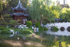 8538Spring17 (Robin Constable Hanson) Tags: chinese water garden gardens green horizontal lake landscapes oriental pagoda pond