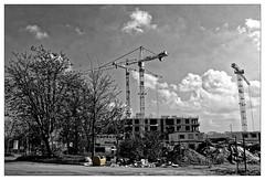 Le salon du chantier (Jean-Marie Lison) Tags: eos80d bruxelels anderlecht ruedelapetiteîle chantier grues immondices noiretblanc nb