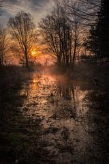 sleepy river (Patryk Krzyzak) Tags: bojanow bridge dusk foto nowadeba patrukkgmailcom patrykkrzyzak podkarpacie poranek ranek spring subcarpatia sunrise wiadukt wiosna wschodslonca