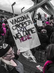 IMG_0207 (justine warrington) Tags: womens march womensmarch womensmarchonwashington washington pink pussy hats pinkpussyhat protest signs trump 45th presidential election january 21st 2017 potus resist resistance is fertile