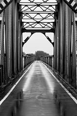 DSC_3815.jpg (JFRYBLN) Tags: blackwhite structural bridge symmetry reflection bw steelwork rain asphalt nikon d90 monochrome lines gate walkway