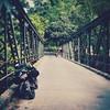 Ninty-90 (Jasmeetphotography) Tags: jasmeetphotography jasmeetsingh traveller motographer nanital bridge camping