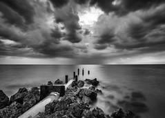A cloudy day at the beach (JWY80) Tags: florida lowdermilkpark naples beach unitedstates us 1835mm d750 nikon longexposure water gulfofmexico rocks bird silverefexpro lightroom blackwhite