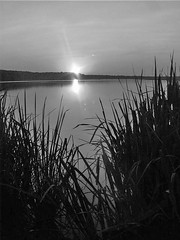 BW Sunset (Whatknot) Tags: 2017 1999 fortparker dallas texas whatknot bw