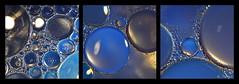 2017-04 - huile et eau 2 [explore] (g_dubois_fr) Tags: macro macrophtographie huile eau macrophotography oil water bulles gouttes drop bubbles couleurs colors