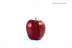 Apple (Giovanni Cordiale) Tags: nikon flickr followme photo passion quality apple red fruit frutta still life stillife lights lightroom experience wallpaper white wall paper definited d750 24120