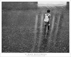 Sidewalk, Leaves, Rain, Reflections (G Dan Mitchell) Tags: tate museum sidewalk reflection person walk rain leaf covered london england uk unitedkingdom street photography blackandwhite monochrome travel
